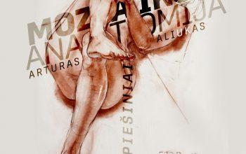 """Kviečiame lankyti Artūro Aliuko darbų parodą """"Mozaikos anatomija"""" Trakų kultūros rūmų meno galerijoje """"Fojė"""""""